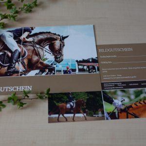Gutschein, Bildgutschein, Shootinggutschein, Janina Sanwald Fotografie, Fotografie, Shooting, Tiershooting, Turnierfotografie